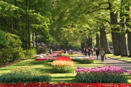 Королевский парк цветов.