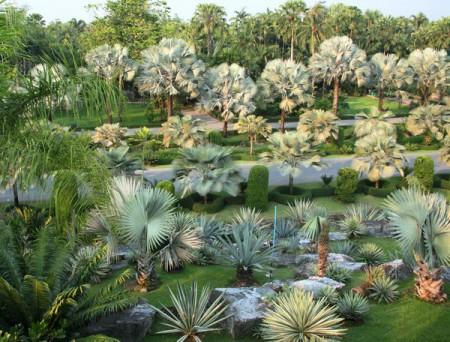 Удивительный парк в Таиланде. Нонг Нуч.